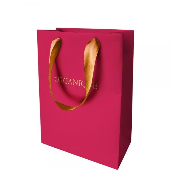 Świąteczna torba prezentowa 220x160x80